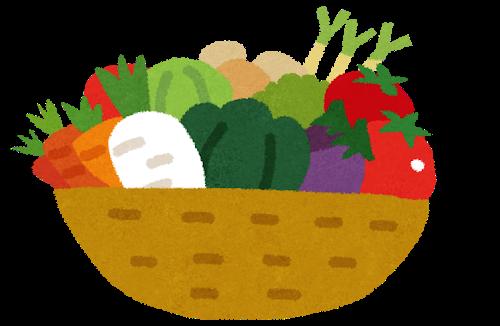 小学生低学年の工作・自由研究~野菜の種アートを作ろう~