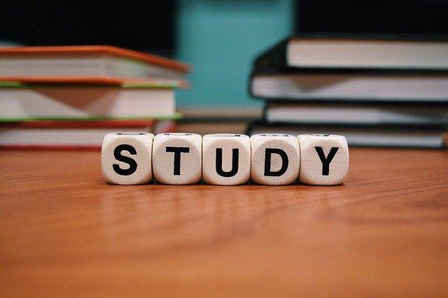 小学生の勉強を親が見る時のコツ【まとめ】