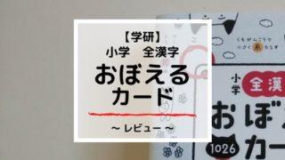 【レビュー】学研『全漢字おぼえるカード』メリット・デメリットを解説