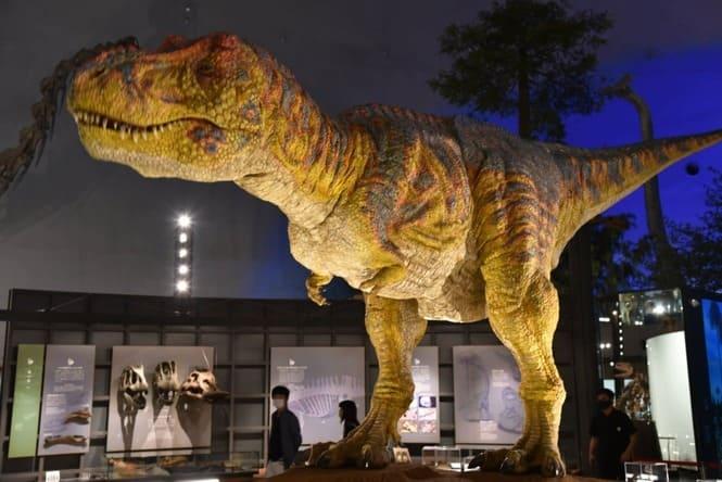 チコちゃんといっしょに課外授業の魅力③子供は動くジオラマで恐竜の迫力が楽しめる